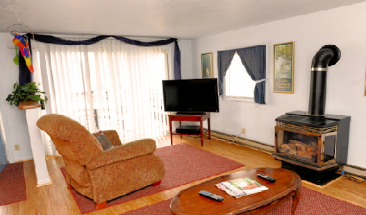 Cabin Nine - Living Room with Gas Fireplace